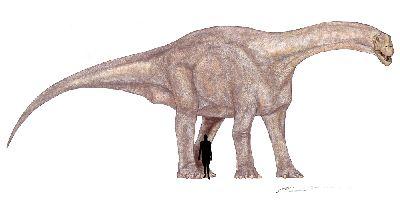 Патагозавр