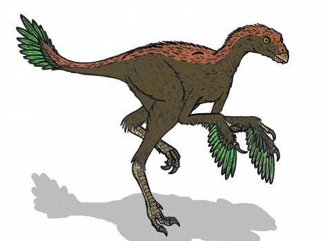 Протархеоптерикс