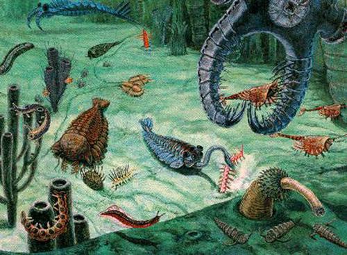Палеозойская эра фото