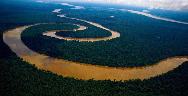 река Амазонка фото