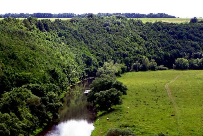 река Воргол