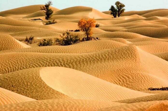 Пустыня Такла-Макан фото