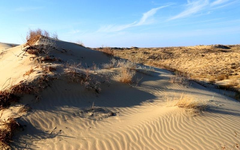 Каракумы пустыня фото
