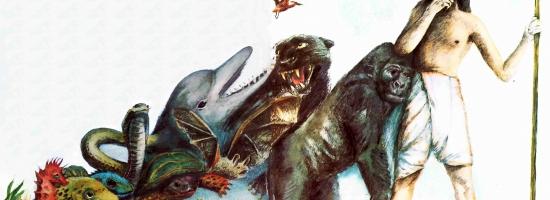 Эволюции по Дарвину